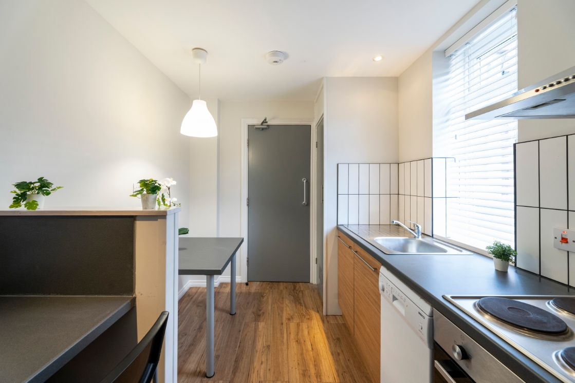 Flat 4 29 Trewhitt Road, Newcastle